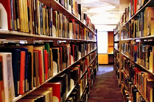 多賀城図書館,多賀城図書館 子連れ,多賀城図書館 駐車場,多賀城図書館 子連れ ランチ