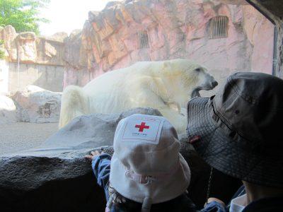 八木山動物園 3歳,八木山動物園 1歳,八木山動物園 情報,八木山動物園 子連れ,八木山動物園 お役立ち情報