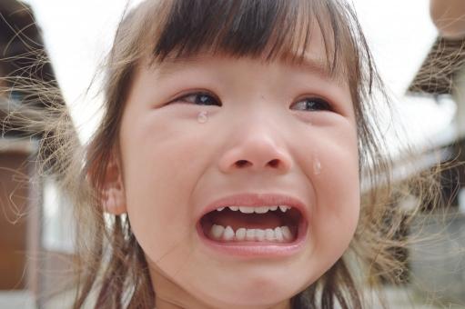 慣らし保育,保育園 慣らし保育,保育園 慣らし保育 泣く,保育園 慣らし保育 泣く なぜ,慣らし保育 ギャン泣き